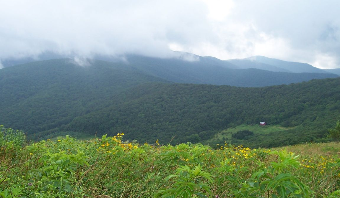 Looking back to Overmountain Shelter